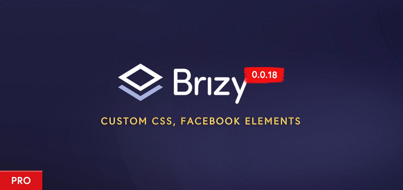 Brizy Pro 0.0.18: Custom CSS & Facebook Elements